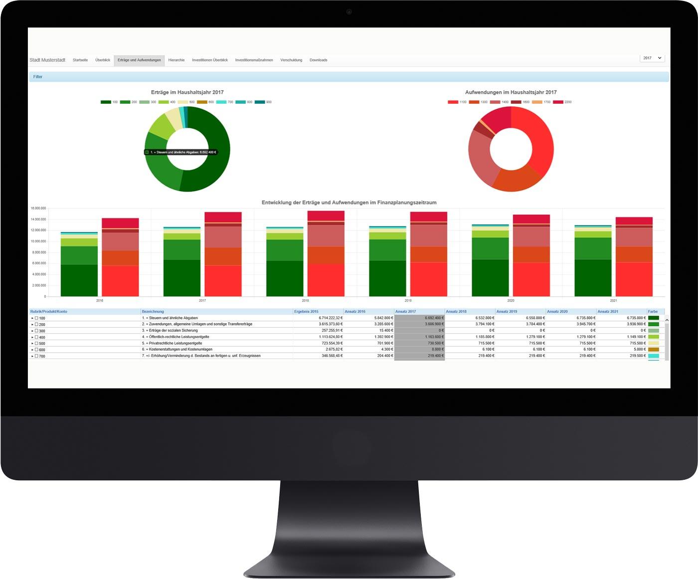 Einnahmen-Ausgaben-Gegenüberstellung der Haushaltsübersicht auf PC-Bildschirm
